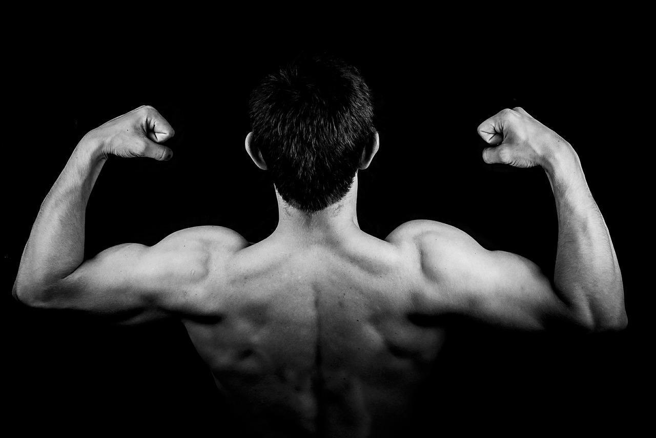 Read more about the article Wskazówki dotyczące budowy mięśni, które naprawdę musisz znać